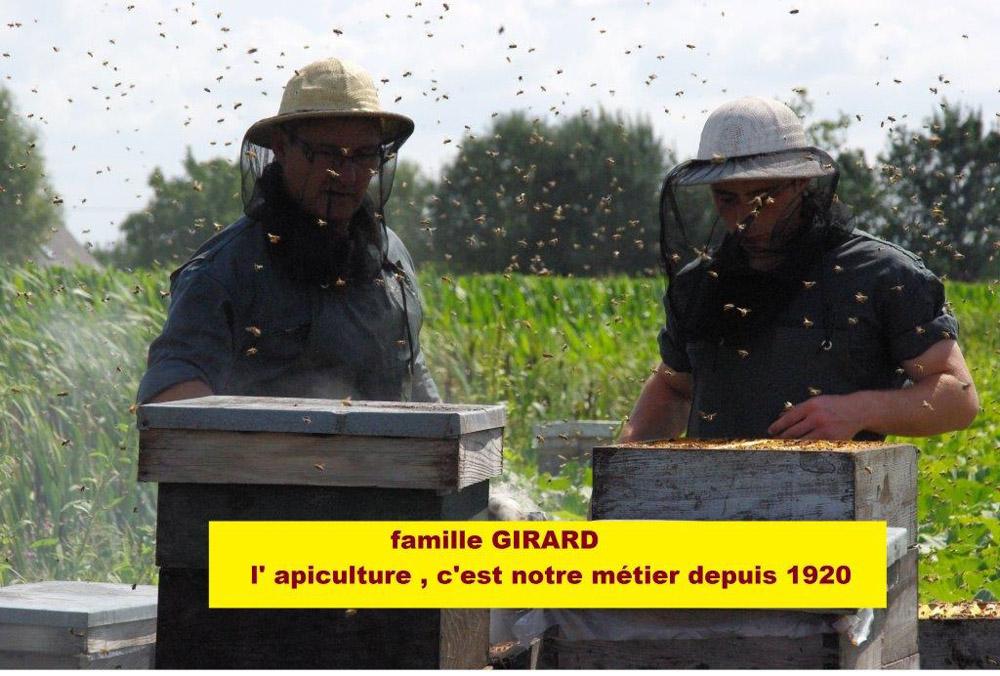 apiculture-chinon-abeilles