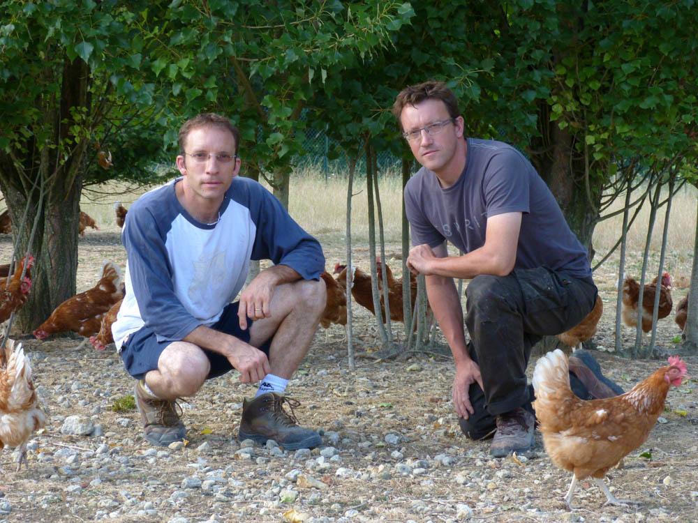 poules-eleveurs-chinon